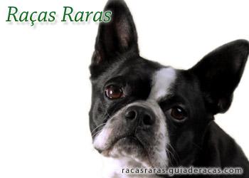 Raças Raras